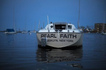 Boat antifoul