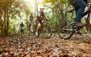 Gorska kolesa